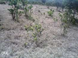 Selling lands and plots