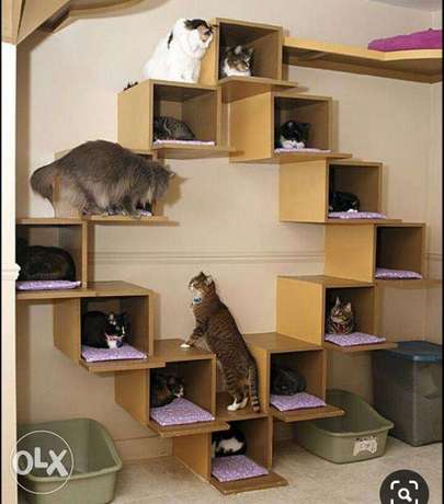 Cat House Pets Design Ideas