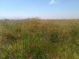15 acres at Mweiga block sale, 3.5 km from Mweiga with river