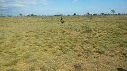 100 acres farm in Laikipia west near Rumuruti town at 150k per acre