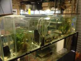 Fish breeding tank and stand