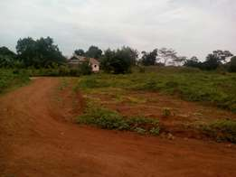 50by100, 12million, Mukono-Namaiba, about 1.5km off Katosi Road.