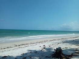 Beach Front 2 & 3 Bedroom Villas For Rent In Nyali