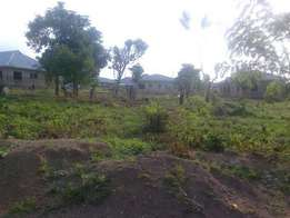 Hot Cake A Plot of Land for Sale In Ajobo Third house to the main road