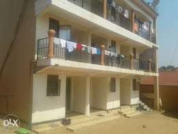 executive apartment double room self contain house for rent in kisaasi