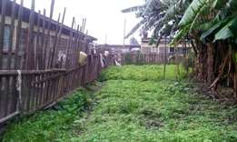 1/4 acre plot for sale in langa langa - Mwariki Nakuru