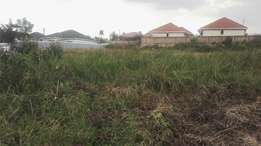 25decimals plot in kisasi near jomayi estate at 120m negotiable