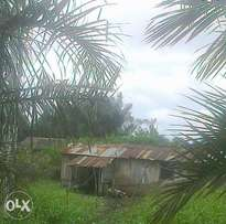 Land with Room & Parlour to sell at Lagos Badagry Road