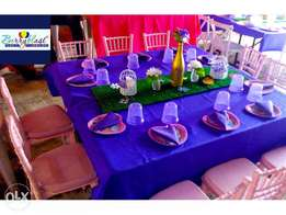 Party planner (berry blast party planners