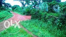 12 square miles near Kayabwe Mpigi good for agriculture 2m an acre