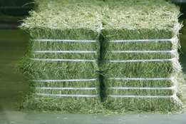 Healthy Hay Bales For Sale