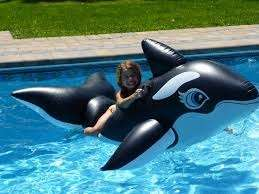 LARGE inflatable dog and large inflatable killer whale/orca ,ride on t