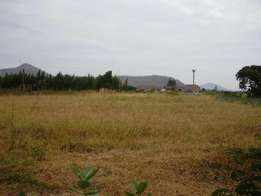 Sagana prime and affordable plots