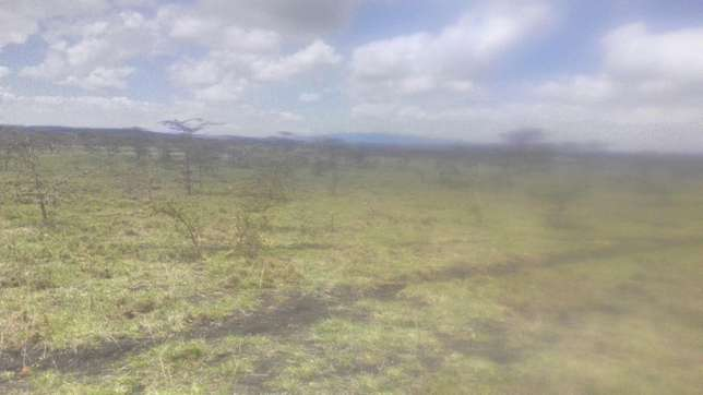 3 Acre Parcel of Land Langata - image 6