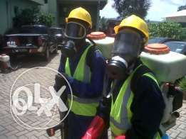 -Pest Fumigation & Pest Control Services eg BEDBUGS etc.