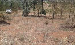 2acre in lusigetti