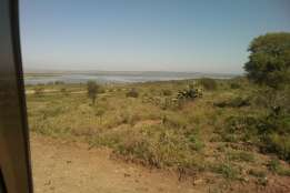Prime plot at Gilgil Elementaita