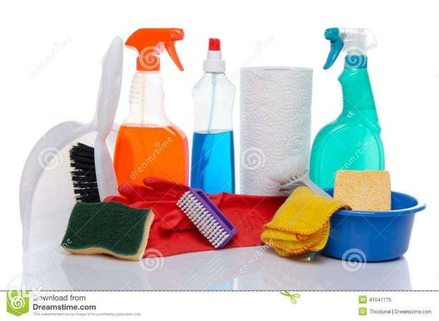 philippine female cleaners available