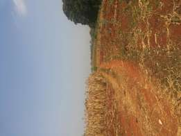 19 acres for sale in kitisuru