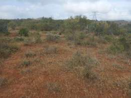 5 Plots remaining for Sale 3 Gone