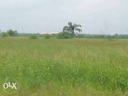 A Plot Of Land For Sale at Sangotedo Lekki
