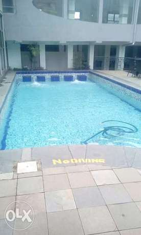Swimming pool cleaning service Lavington - image 2