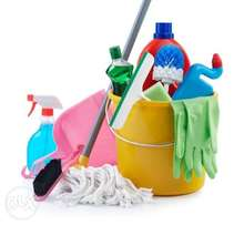 Cleaning Lady (Part-time) wanted
