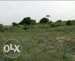 Land with C of O for sale