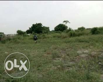 Land with C of O for sale Ojodu - image 1
