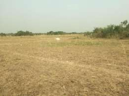 Good pricing for Afienya land 4 sale