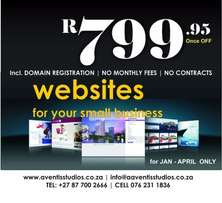Want a website? it will cost you R799.00