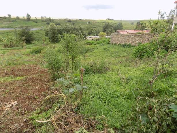 Thika Ngoingwa 50x100 plot for sale Thika - image 3