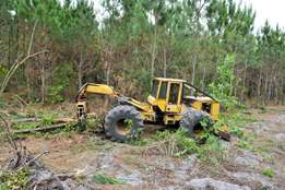 Tree Felling & Land Scaping