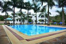 Modern spacious 2 bedroom apartment with swimming pool and SQ
