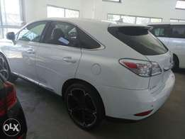 White Rx450 Lexus KCP number 2010 model