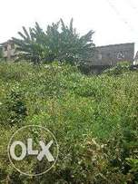 A plot of land at Agbo Oba area ilorin kwara state