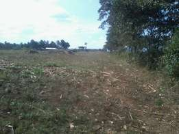 2 Acres for sale in Okilgei, Njoro