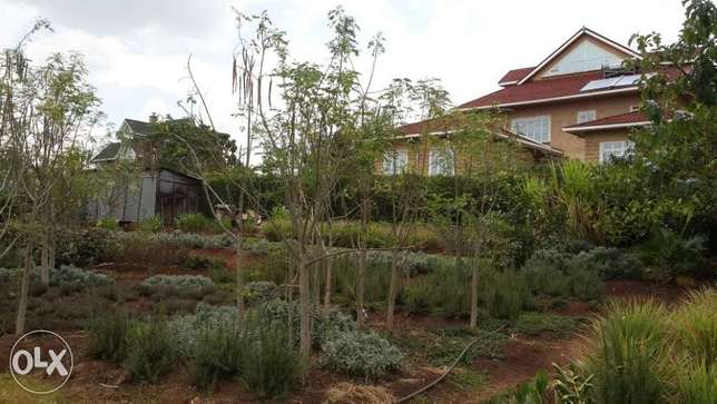 Prime 1/2 Acre in Garden Estate (Gated community with gorgeous homes) Ridgeways - image 2