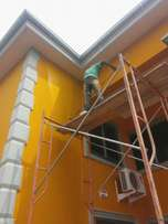 Painting&Wall Design Works