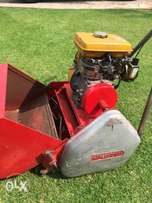 Professional Robin petrol lawnmower