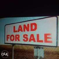 33 plots of land along East-West Rd close to UPTH for sale!