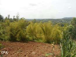 10 acres for sale in Nyamataro area of Kisii county