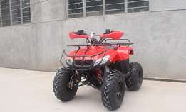 quad bikes available for hire