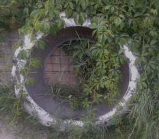 Doniczki Z Opon Ogród Olxpl