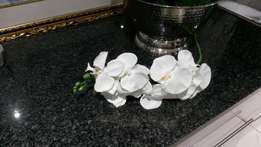 Silk orchid stems for sale 18 per stem