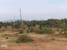 50x100 Plot for Sale at Kashphat Kiambu at 2.6million