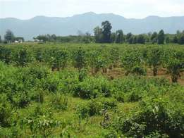 4500 acres at subukia near lower solai on sale with red soil for coffe
