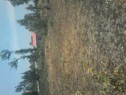 40*80 at Kenol,Murang'a county, Prime area. 6 plots left only.