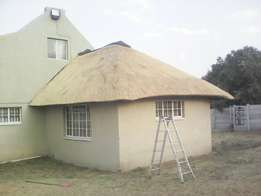Professional Thatching