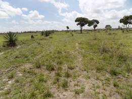 Landless 50x100 Plots For Sale